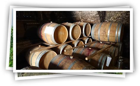 Net binnen: nieuwe jaren oranje wijnen van Ricci